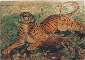 Tigre Reale, China e Pastelli