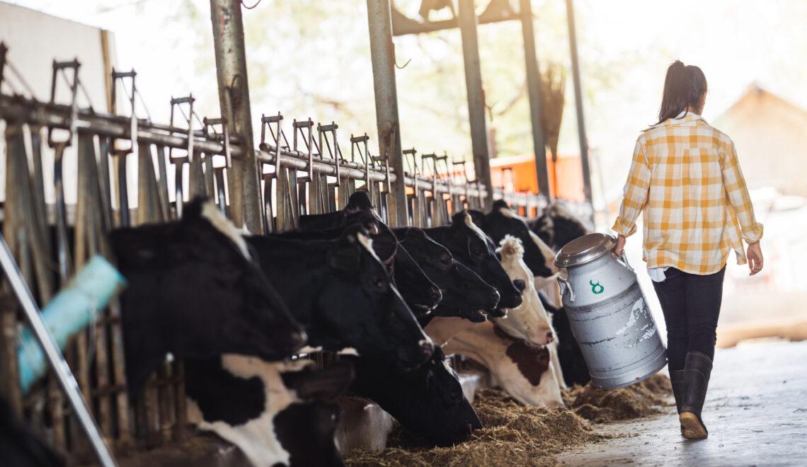 Agroalimentare: +25% per l'export di carni e salumi cremonesi nel primo trimestre